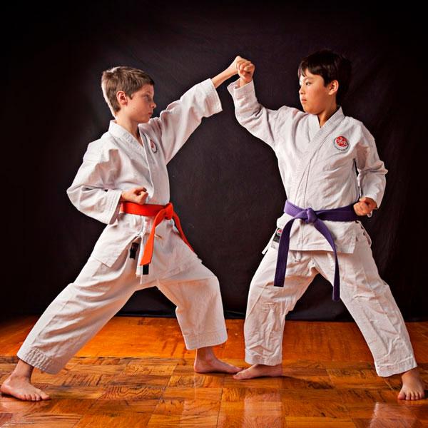 Service Karate.jpg